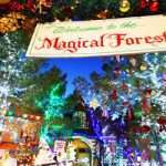 EVIL DEAD THE MUSICAL to perform at Magical Forest