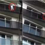 Watch: 'Spider-Man of Paris' climbs four storeys to rescue child