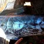 Fishermen caught the fish with tattoos, gets panic when looking carefully : ' Does it come from another planet?